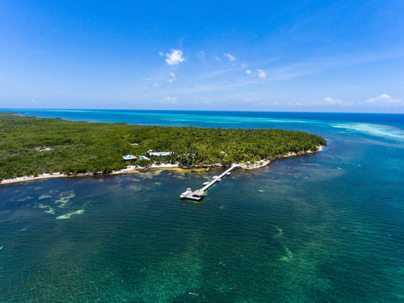 lighthouse reef belize diving